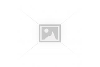 Обзор аэрозольного пистолета Пионер - лучший газовый пистолет